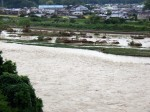 Trees deposited in the river - Japan photo - Gaijin Farmer